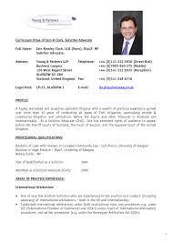 resume vitae professional curriculum vitae samples