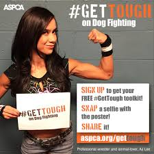 Join the ASPCA and Professional Wrestler <b>AJ Lee</b> to #GetTough on ...