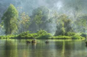 Image result for Obyek Wisata Situ Cileunca, Pangalengan, Bandung