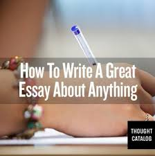 ideas about Good Essay on Pinterest   Essay Writing  Paper     Pinterest How to write a good essay  How to write an essay that will definitely get