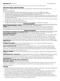 digital marketing manager on hire  downld my cv  e commerce specialis…