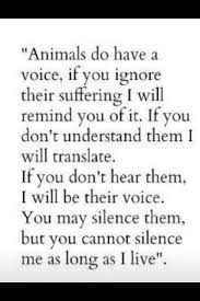 Animal Lover Quotes on Pinterest | Dog Quotes, Dogs and Pets