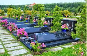 Kết quả hình ảnh cho vươn hoa nghĩa trang điện biên
