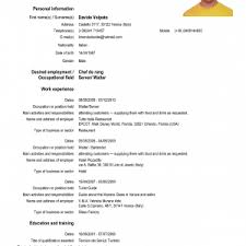 Resume Templates Download Word  resume template free  free     Lighteux Com