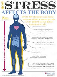 how stress affects the bodyheartmath how stress affects your body