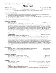 example of resume experience template example of resume experience