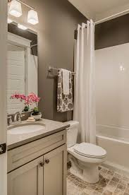 bathroom painting ideas hgtv