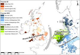 Vegetation classification as a mirror of evolution? Thoughts on the ...