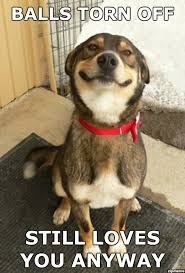 Good Dog Greg - WeKnowMemes Generator via Relatably.com