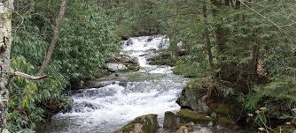 Image result for clean creek images
