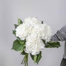 <b>Букет</b> из <b>5</b> белых <b>гортензий</b> за 3350 р. - Доставка цветов в Москве