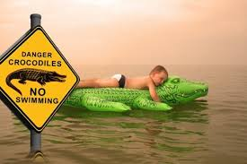 don't swim with crocodiles