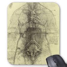human anatomy female torso by leonardo da vinci mouse pad anatomy office
