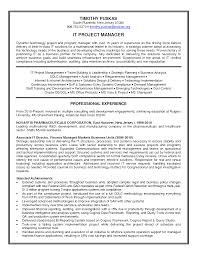 it project manager resume template sample book report 2nd grade help writing a research paper