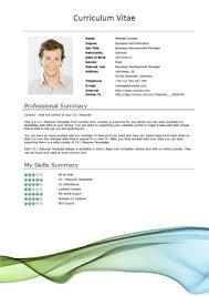 microsoft word doc professional job resume and cv templates    free resume cv template word