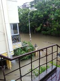 sandhya s blog chennai floods when essay topics became reality half the gate flooded was just a start
