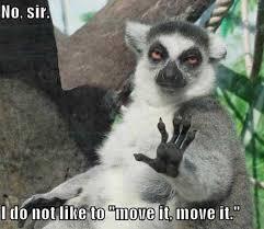 Move Meme   Funny Pictures, Quotes, Memes, Jokes via Relatably.com