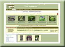Galleria della Flora - Acta Plantarum