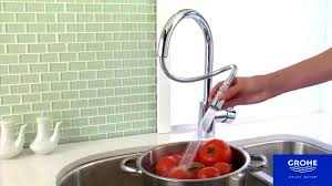 grohe kitchen faucet speed clean anti