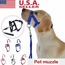 <b>Adjustable Pet Dog</b> Mask Anti Bark Bite Mesh Soft <b>Mouth Muzzle</b> ...