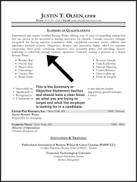 Resume Examples  Resume Objective Summary Examples  resume     Rufoot Resumes  Esay  and Templates