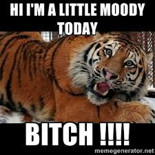 Hi I'm a little moody today BITCH !!!! - Sarcasm Tiger | Meme ... via Relatably.com