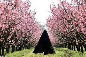 Image result for خانم چادری از نمای پشت سر