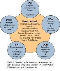Panic Attacks  Panic Disorder  Generalized Anxiety Disorder  Obsessive Compulsive Disorder  Social Phobias Pinterest