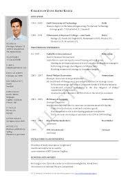 curriculum vitae samples curriculum vitae samples doc format curriculum vitae template curriculum vitae sample 1 tgsny03r