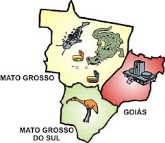 Resultado de imagem para IMAGENS DE COMIDAS TIPICAS DE GOIAS