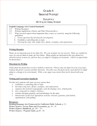 introduction examples memo formats essay introduction examples