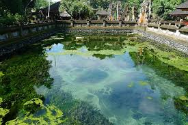 Image result for pura tirta empul is