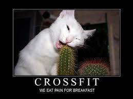 Image result for crossfit funny sayings