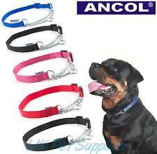 L <b>цепь ошейники</b> для собак - огромный выбор по лучшим ценам ...