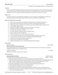 online resume web developer bio data maker online resume web developer php web developer resume samples examples web developer resume for result