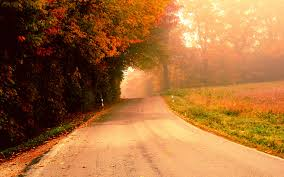 Image result for autumn street