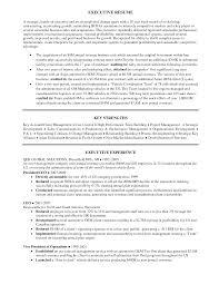 resume sales manager automobile dealer lewesmr sample resume sales manager