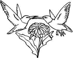 Small Picture Hummingbird Coloring Pages fablesfromthefriendscom