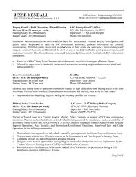 usa jobs resume format resume format  federal government