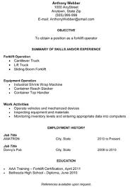 combination resume download your free combination resume template free combination resume template