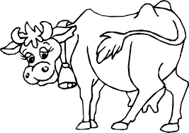 Small Picture Beef Cow Coloring Pages Coloring Coloring Coloring Pages