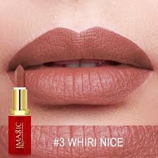 IMAGIC <b>12 Colors Matte Lipsticks</b> Crystal Column Matte Lipstick Lip ...