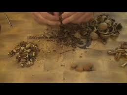how to <b>crack</b> open <b>pecans</b>, <b>walnuts</b>, and <b>almonds</b> - YouTube