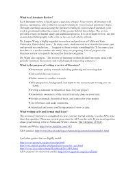 literature research essay research paper apa literature review teodor ilincai literature review research paper sawyoo com
