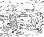 Раскраска чёрного моря