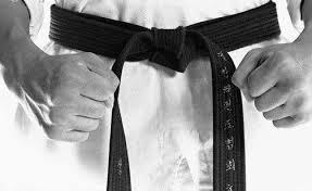 <b>Пояса</b> в каратэ – Karate.ru