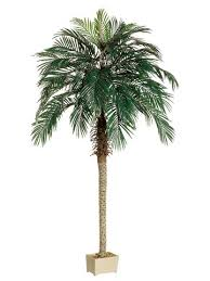 Pack of 2 <b>Artificial Phoenix Palm Trees</b> 7' - Andrea T. Cookez