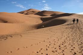 Resultado de imagem para deserto do saara