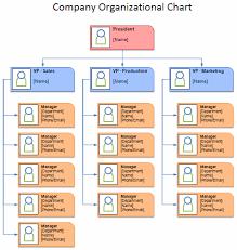 free organizational chart template   company organization chartorganizational chart template