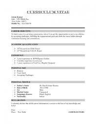 profile resume profile statement examples resume profile statement examples photos full size